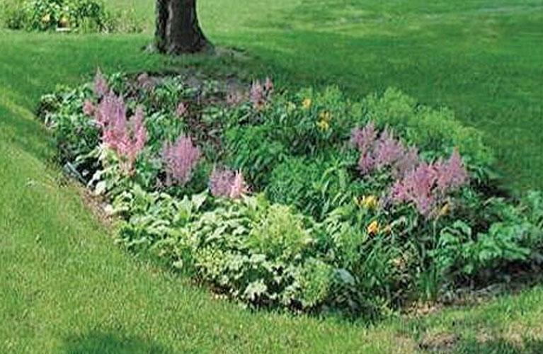image-greencallout-outdoorbeautification-raingarden