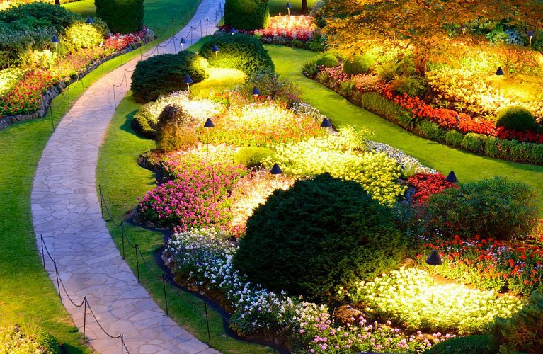 professional landscape lighting illuminates a garden at dusk