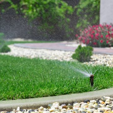 irrigation system sprays water on a lawn