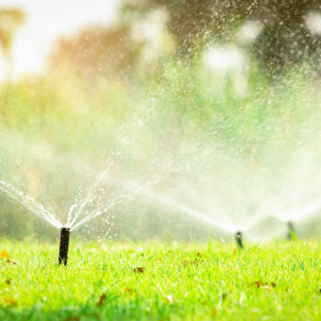 automated sprinkler watering grass on a vibrantly green lawn