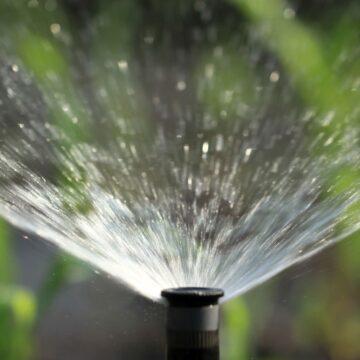 sprinkler head watering the lawn
